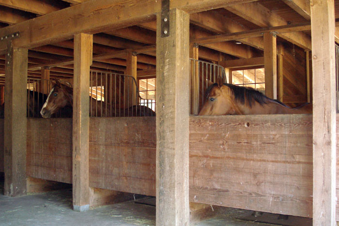 Main barn with heated tack room and hay loft
